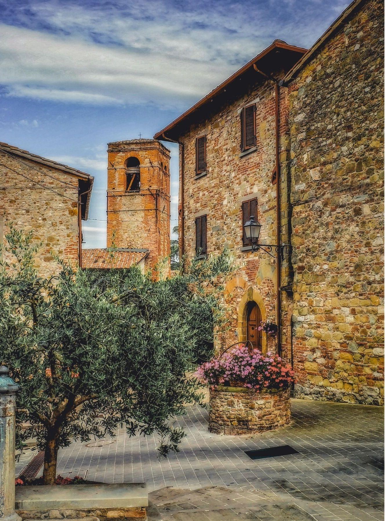 Alte Häuser in Italien und Olivenbaum