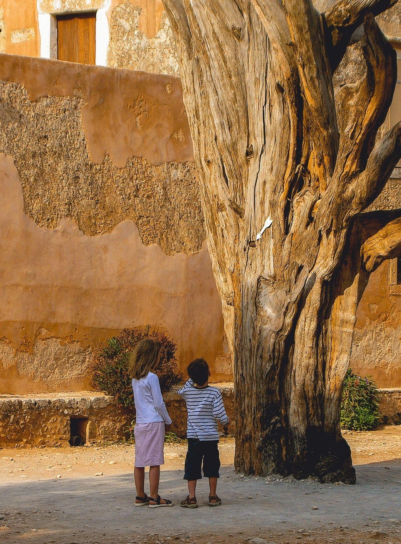Zwei Kinder vor einem großen Baum